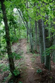 18tailing_path