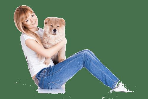 dog resort houston
