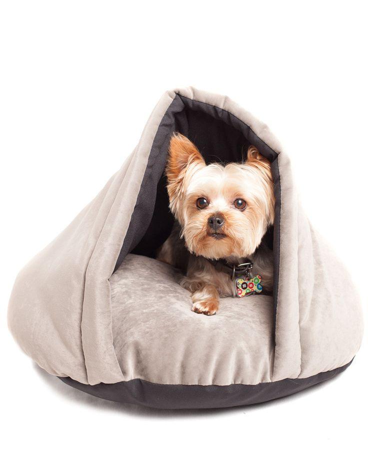 dog daycare houston tx