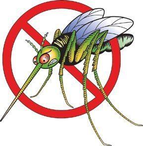 no more mosquitos!