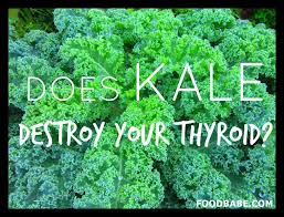 goitrogen-photo-option-1-with-kale