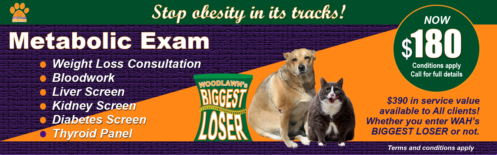 WAH's Obesity Promotion for The Biggest Loser