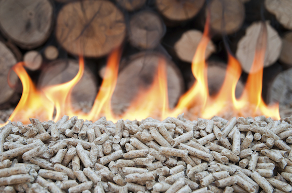 Biomass Boilers for Renewable Energy
