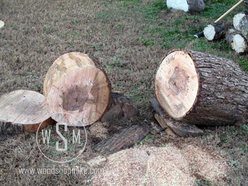 Log Cut to Length