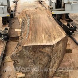 Wood Slabs  Wood Slabs For Sale
