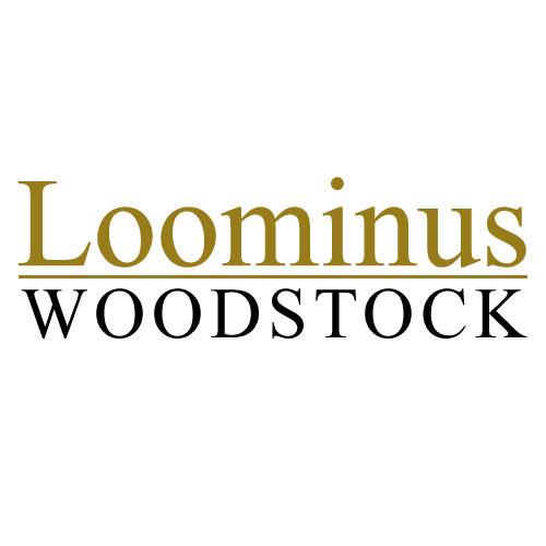 loominus-sponsor-woodstock-bookfest