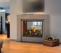 HD81 See Thru Napoleon Gas Fireplace by Obadiah's Woodstoves