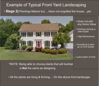 Example of Poor front yard landscape design leading to overgrown landscaping. Stage 2. After 8-9 years.