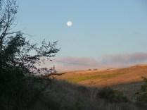 Sunrise on the Meseta
