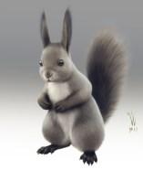 animal-hokkaido-squirrel