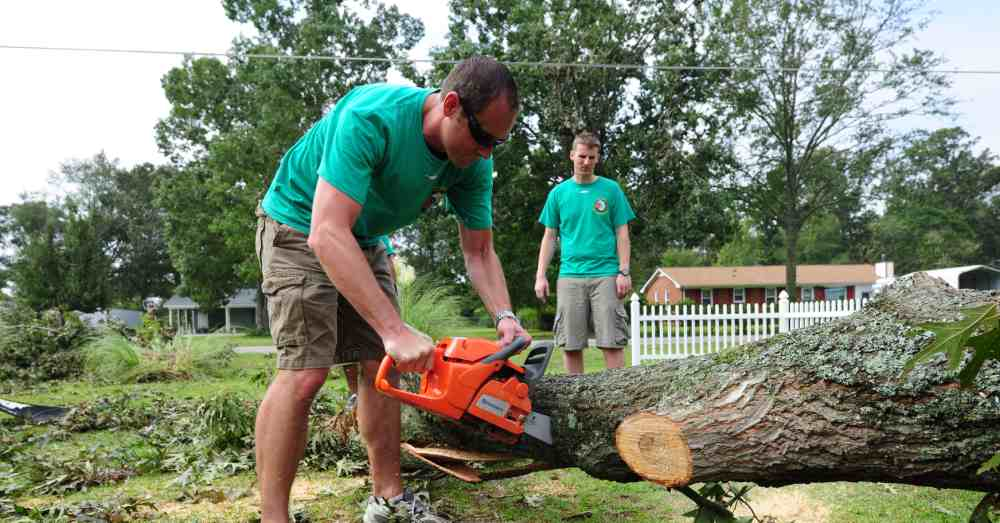 Who Makes the Best Chainsaw in the World