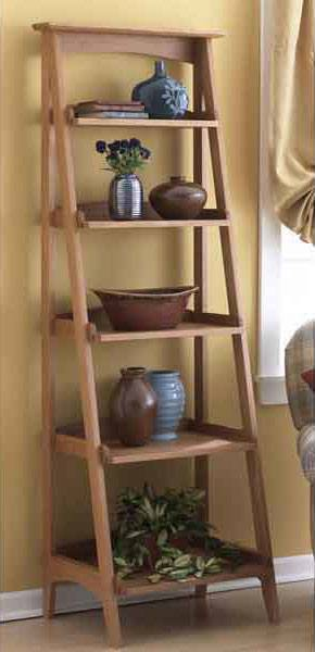 Ladder Shelves Woodworking Plan  WoodworkersWorkshop