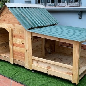 Fun House Design Ideas for Your Pets - How To Building A Warm Dog House - Best Dog Houses For Winter