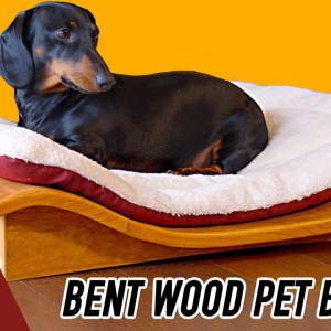 How to Make a Curvy Dog Bed by Bending Plywood