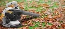 Gas-Powered Leaf Mulcher