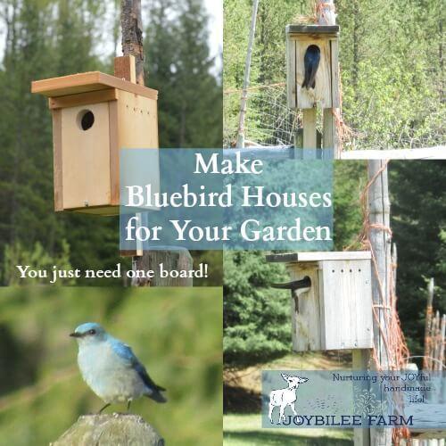 Bluebird Houses DIY Tutorial