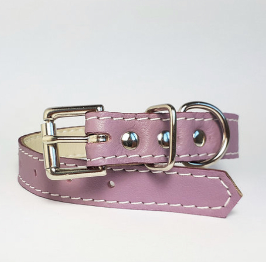 Leather collar and lead blossom
