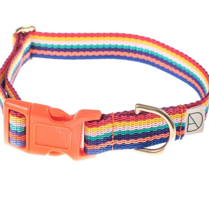 Rainbow Dog Collar