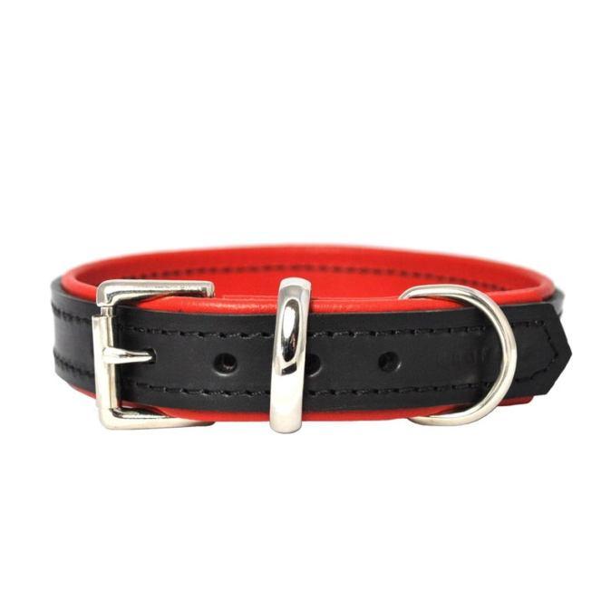 Black on Red Padded Dog Collar