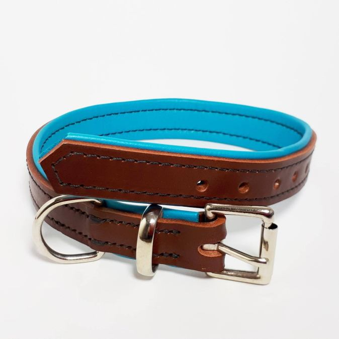 Brown on Turquoise Padded Dog Collar