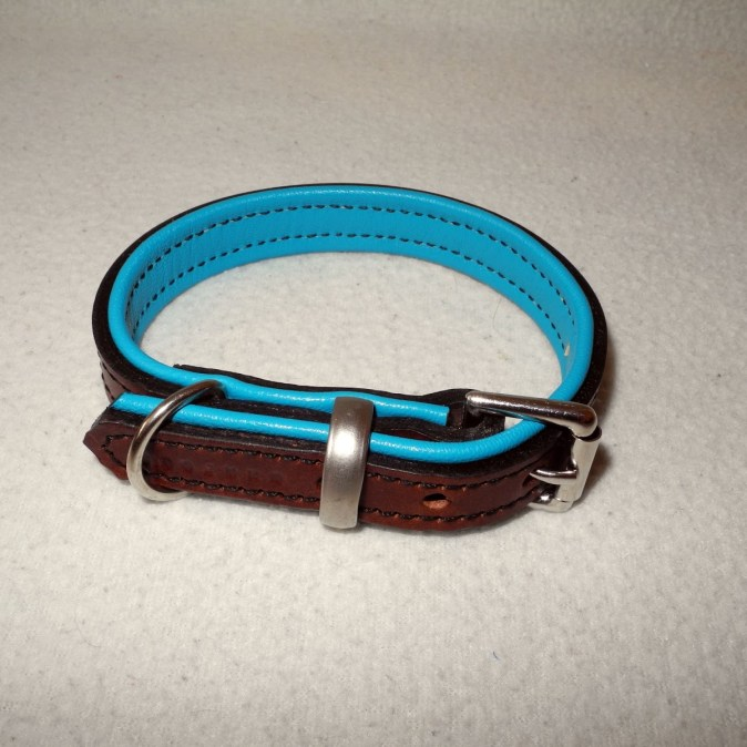 Soft Padded Leather Dog Collar - Tan on Turquoise