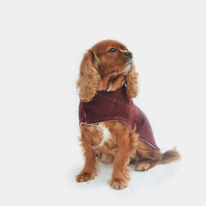 Tweed Frisbee Dog Coat