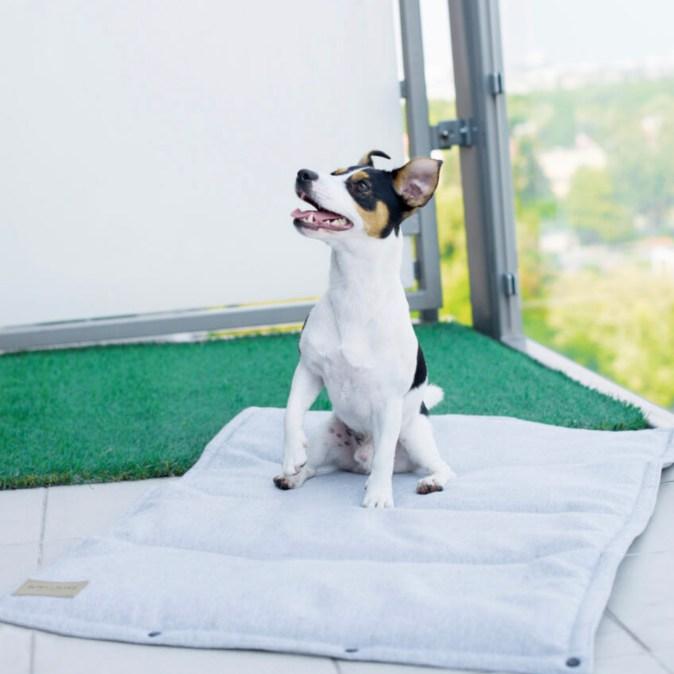 Grey Dog Mat Loft