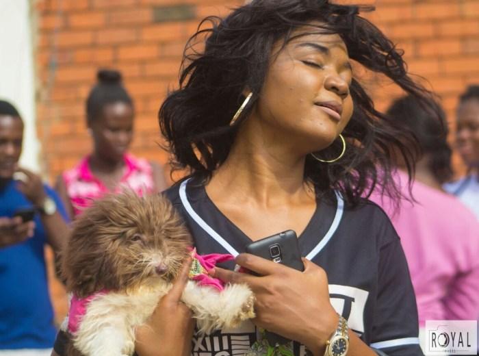Pent Dog Show 2017 Ghana 4