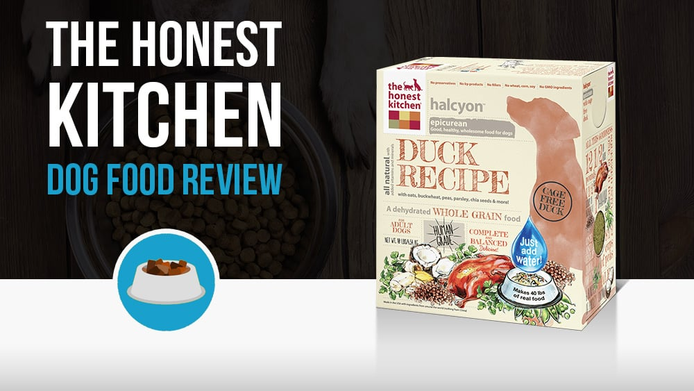 The Honest Kitchen Dog Food Review  Woof Whiskers
