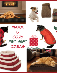 Cozy pet ts also warm woof mama rh woofwoofmama