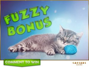 Caesars Casino Fuzzy Bouns Coins