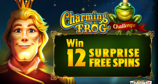 house of fun charming frog challenge