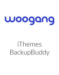 iThemes BackupBuddy