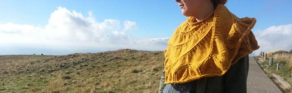 Begonia Swirl - tricot chale - entete