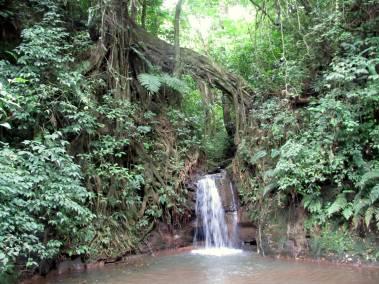 A sweet little waterfall.