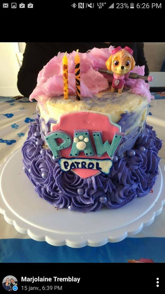 plus d'idées pour une fête Pat'patrouille Wooloo