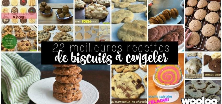 22 meilleures recettes de biscuits à congeler wooloo