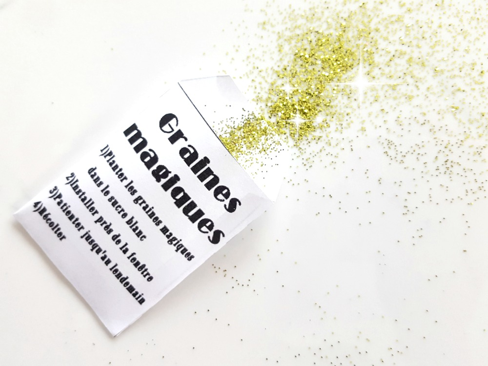 Enveloppe de graines magiques + Patron à découper