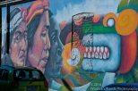 Native South American Art