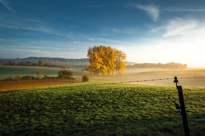natuur belgie