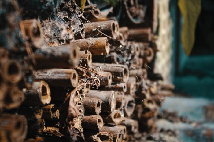 hout voor het insectenhotel