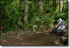 2010-rnd7-worcs-racing-07-beau-baron-honda-atv-trx450r-woods-225