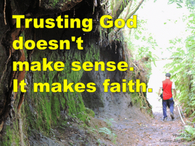 Trusting God doesn't make sense. It makes faith.