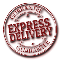 International Credit Evaluation Express Domestic Delivery