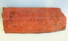 atlantic-salmon-dilled-gravlax-process-19