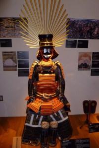 Samurai resized