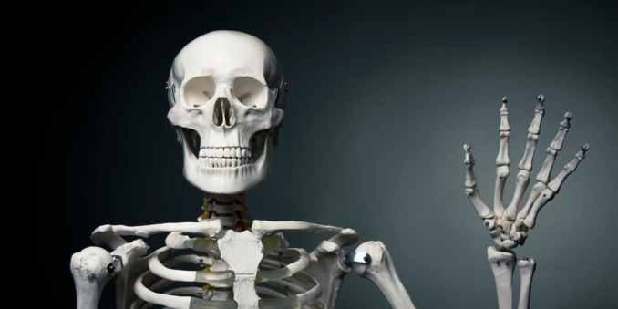 Funny Skeleton Names That Will Tickle Your Fancy