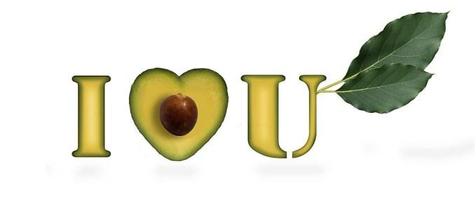 Avocado Design