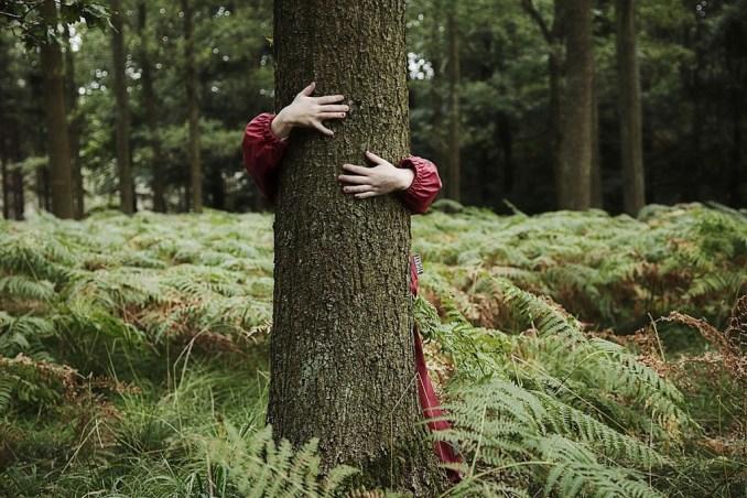 Tree Names fir Girls