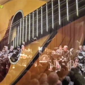 Pink Floyd Mandolin Orchestra - Shine On You Crazy Diamond